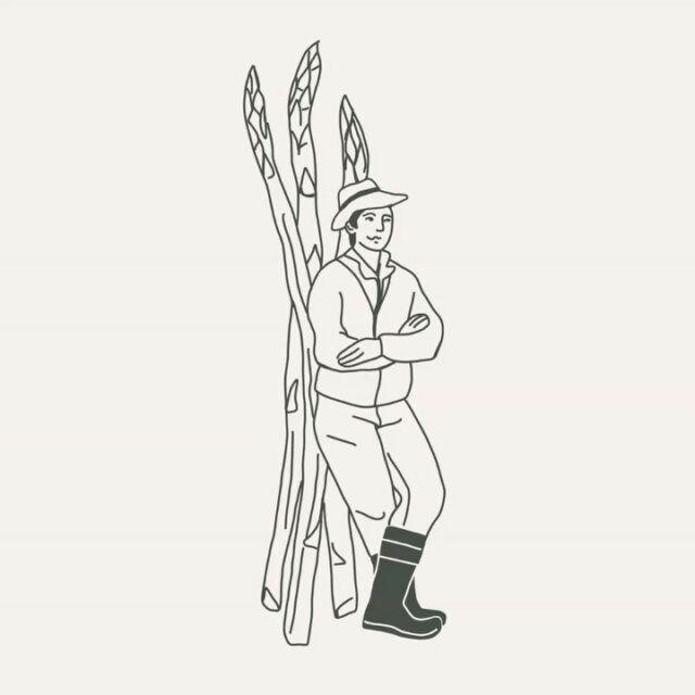Kirschen rot, Spargel tot! Das alte Bauersprichwort besagt, dass die Spargelzeit endet wenn die Kirschen reif zum pflücken sind. Und das ist in der Regel um den 24.6 der Fall. Frischer Spargel aus der Region gibt es bei uns daher nur noch wenige Tage.